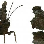 bronze - 16x26x18cm